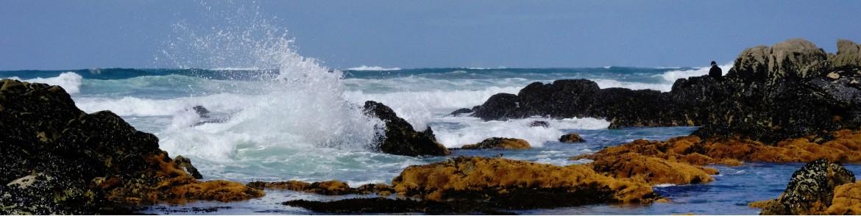 Nature - Paysage - Evynolez Pictures
